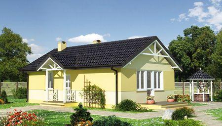 Існуючий одноповерхового будинку - перлини дачної ділянки
