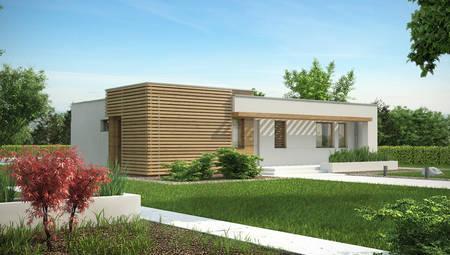 Проект одноповерхового будинку в стилі бунгало